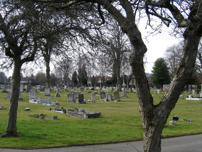 Beeston and Stapleford (Beeston) Cemetery. Ernest Jarrett's grave can just be seen in the crook of the tree on the right.