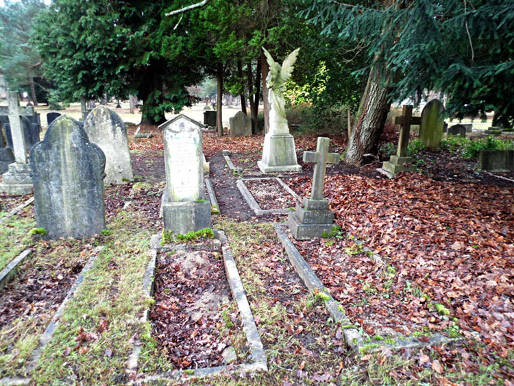 Private Henry Bothwell#s Grave in Brookwood Cemetery, - the Bothwell Family Grave is the Central Plot on the Right.