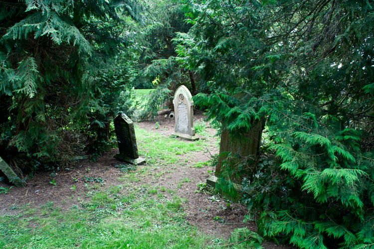L/Cpl Salmon's headstone (right) AFTER branches and undergrowth had been moved back. Note the hidden headstones on the left of the picture.