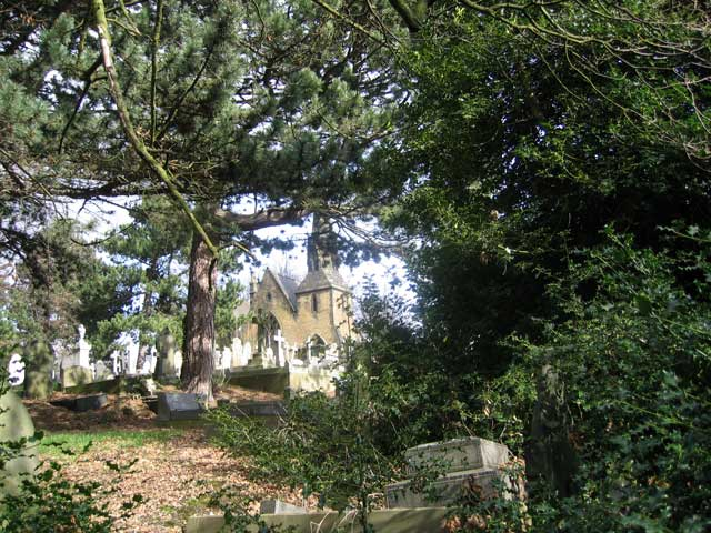 Another view of the large holly bush obscuring Private Wolstenholme's grave, but also showing the cemetery chapel (behind)